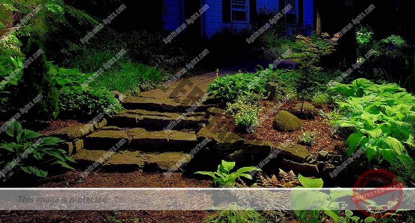 Downlighting on Pathway and Steps